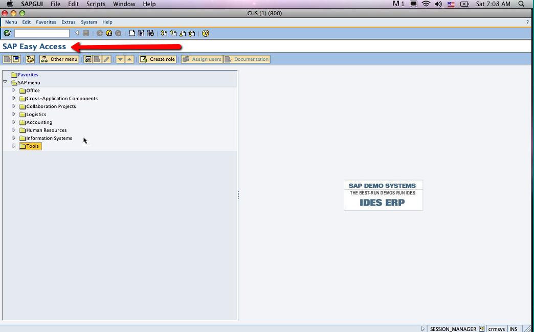 SAP GUI Navigation Tutorial (Part 1)   Magna Training Blog ...